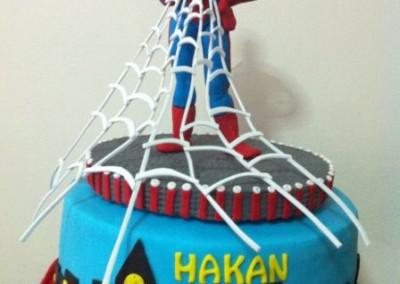 spider_man_05